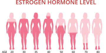 Estrogen Hormone. What You Need To Know.
